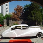 vintage care_big